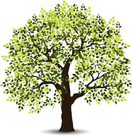 stylized tree for your design