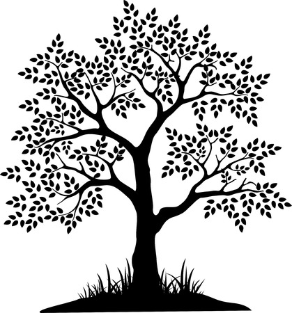 genealogical: black tree silhouette for your design