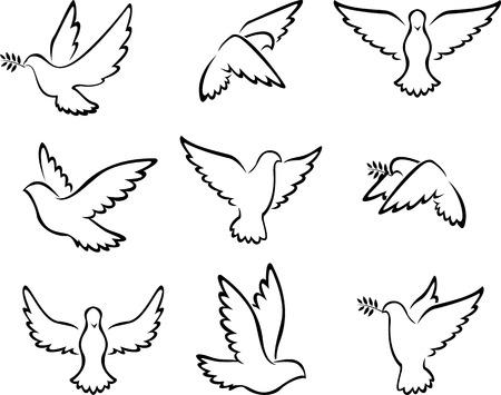 dove: colección de pájaros de la paloma para el concepto de paz y diseño de la boda Vectores