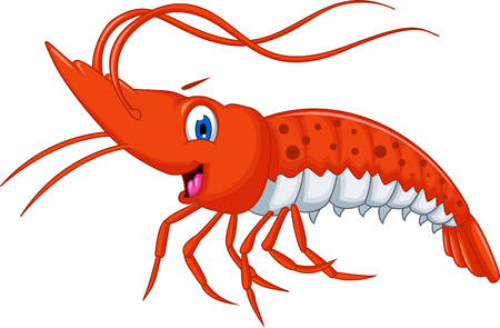 marine crustaceans: Cute shrimp cartoon