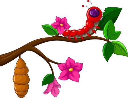 worm cartoon: Worm cartoon life cycle