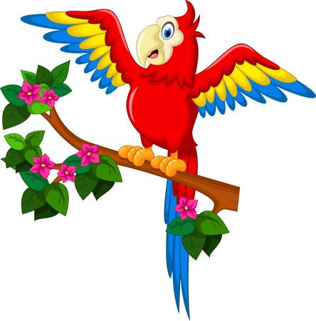 Cartoon rode papegaai op een tak voor u ontwerpen