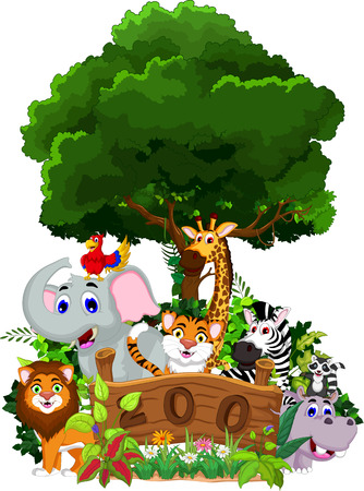 zoo and the animal cartoon