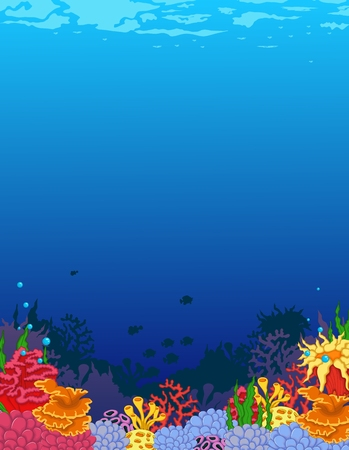 reef: beauty corals with underwater view background