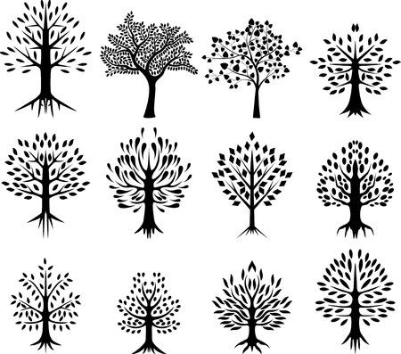 roble arbol: colección de la silueta del árbol Vectores