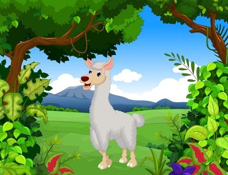 ruminant: cute lama cartoon with landscape background