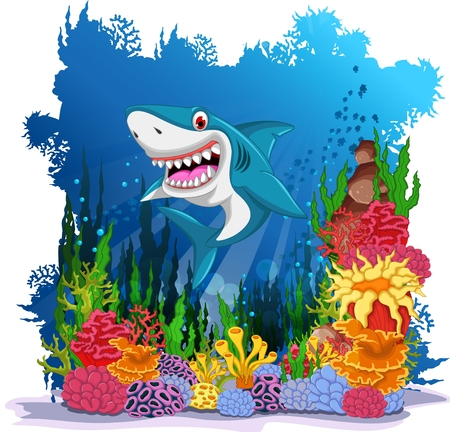sea anemone: funny shark with sea life background