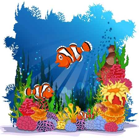 clown fish: funny clown fish with sea life background