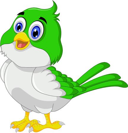 pajaro caricatura: pájaro lindo posando de dibujos animados