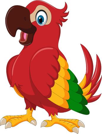 macaw: cute parrot cartoon posing