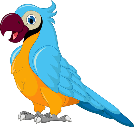 cute parrot cartoon Illustration