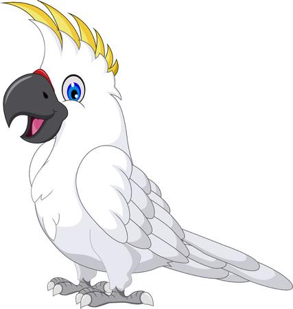 cartoon parrot: cockatoo cartoon posing
