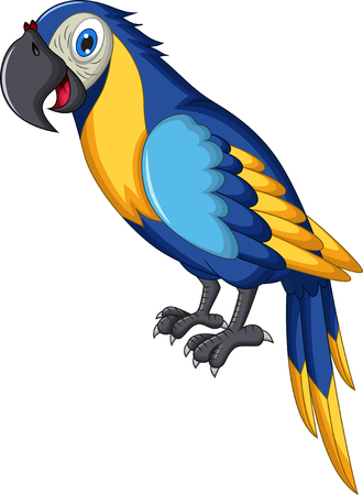 the animated cartoon: cute parrot cartoon Illustration