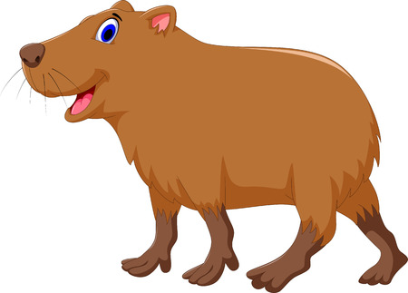 biggest animal: cute Capybara cartoon