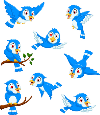 pajaro caricatura: pájaro azul posando colección de dibujos animados