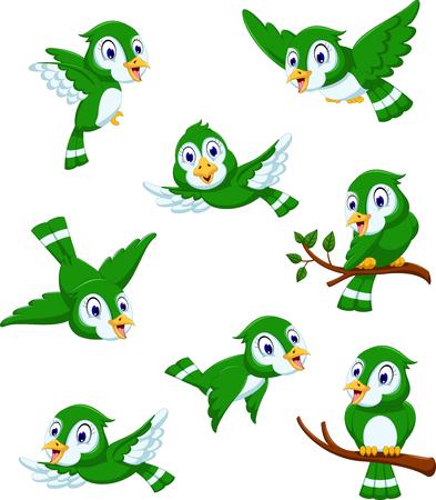 cute green bird cartoon posing