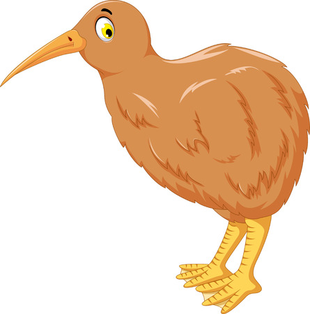 flightless: kiwi bird cartoon posing