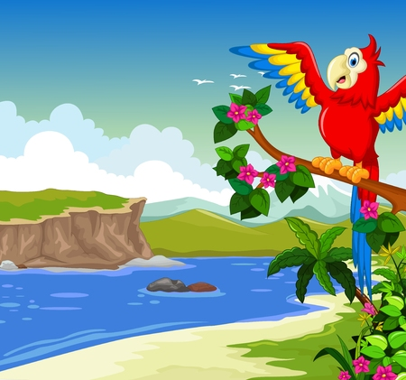 nature scenery: funny macaw bird  on a branch with lake background