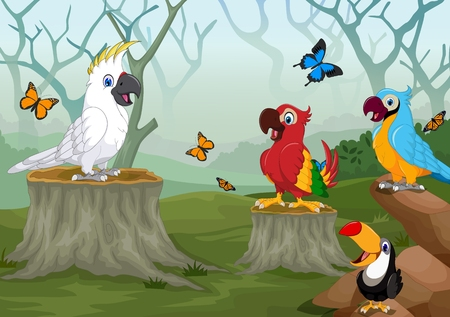 cockatoo: funny bird in the deep forest landscape background Illustration