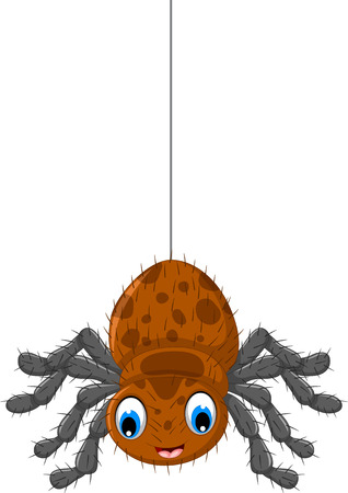 arachnid: funny brown spider cartoon posing