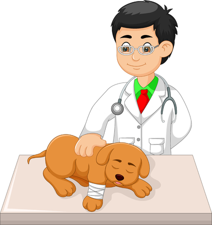 Veterinarian check dog cartoon