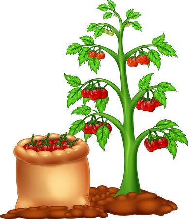 Funny Tomato Tree Cartoon for your design