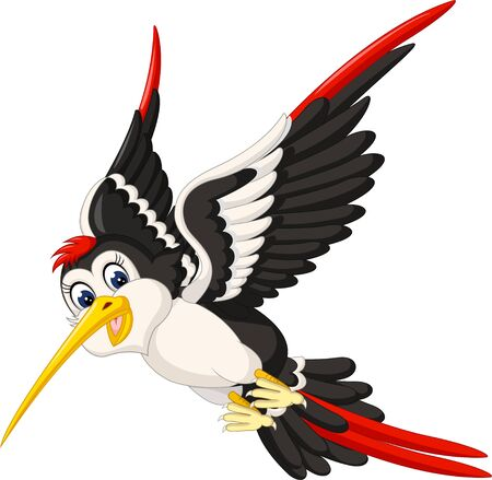 Funny White Black Red Bird Cartoon For Your Design