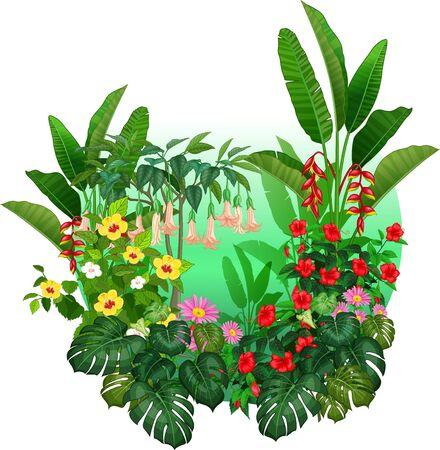 Beautiful Tropical Plants Cartoon Set