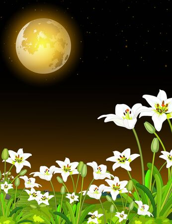 Cool Night Life View Moonlight With White Ivy Flower Cartoon