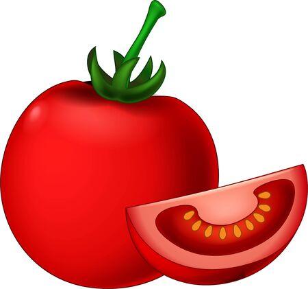 Red Tomato Fruit Vegetable Cartoon Vector Illustration Isolated Vegan Food