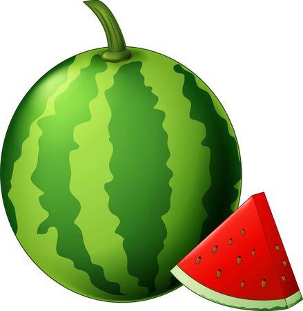 Fresh Watermelon Fruit Cartoon Vector Illustration Isolated