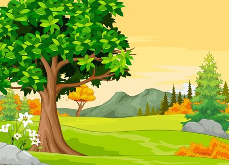 Landscape Grass Field View With Trees and White Flowers Cartoon Vector Illustration