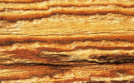 colorful wood skin texture background under sunshine with several parallel stripes. Banco de Imagens