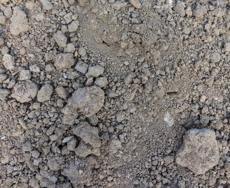 Ground textured under sunlight