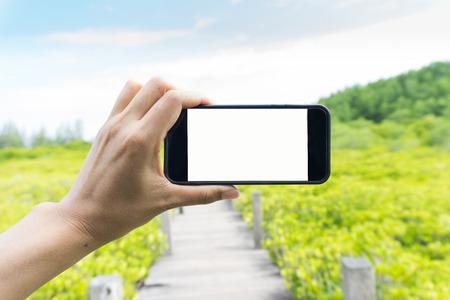 女性がスマート フォンを使用しては、桐芯ひも、自然保護区、タイのラヨーンの森の写真を撮る。 写真素材