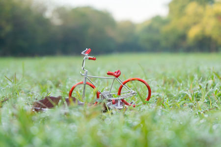 Toy red bicycle in the beautiful park background.