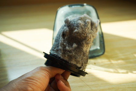 Woman hand hold dust from handheld vacuum cleaner, dirty.