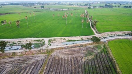 Aerial view of rice fields and canals without water, summer crisis at Thailand.