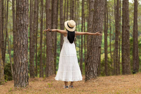 Asian female tourist in white dress is enjoying the beauty of pine forest, Chiang Mai, Thailand.