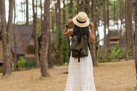 Asian female tourist in white dress with vacation in a pine forest at Doi Bo Luang, Chiang Mai, Thailand. 版權商用圖片