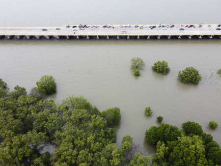 A bridge along the seashore with green mangrove trees, a viewpoint with parking to rest at Chon Ra Mak Vi Tee Bridge, Chon Buri Province, Thailand.