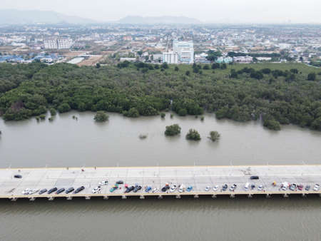 Many residents parked on the bridge for evening views, behind mangroves and urban villages. 版權商用圖片