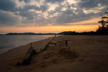 Old log on the sand, Sea at dusk, Sunset at sea, Vintage tone.