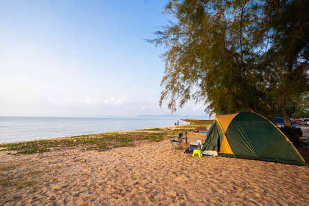 Asian tourists' tents on vacation at sea, blue sky and pine trees lined the beach. 版權商用圖片