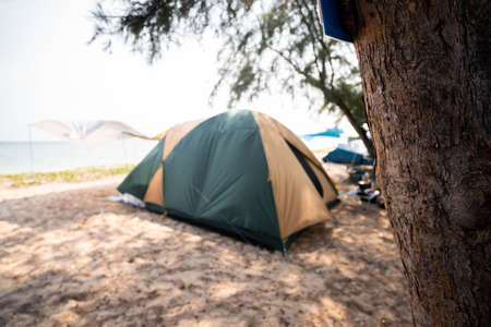 Tourist tent on vacation at sea, blurry pictures at tent, focus on trees.