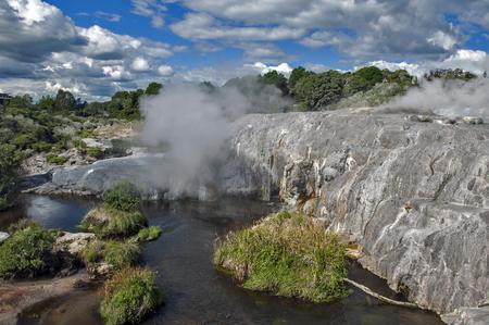 erupting: Whakarewarewa Geyser at Te Pui thermal park in geothermal valley of Rotorua, New Zealand