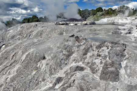 te: Whakarewarewa Geyser at Te Pui thermal park in geothermal valley of Rotorua, New Zealand