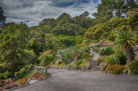 botanic: Botanic garden in Wellington, New Zealand