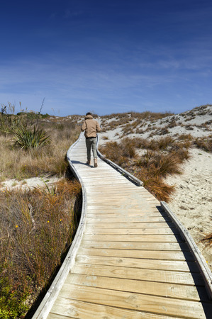 Man walking on wooden walkway by the beach at Tauparikaka Marine Reserve, Haast, New Zealand