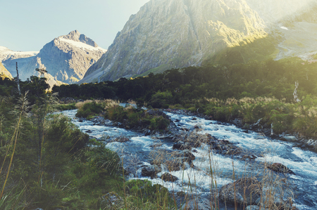 milford: Scenic lookout of Hollyford Valley at Monkey Creek on Milford Road to Milford Sound, New Zealand